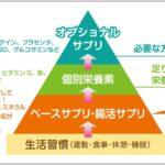 2021年最新版 サプリメントのピラミッド