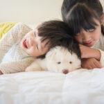 子供の食物アレルギーを防ぐにはペットを飼うことが有効